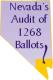 Nevada's audit